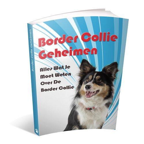 Border collie geheimen