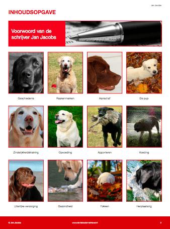 Het Complete Labrador Handboek