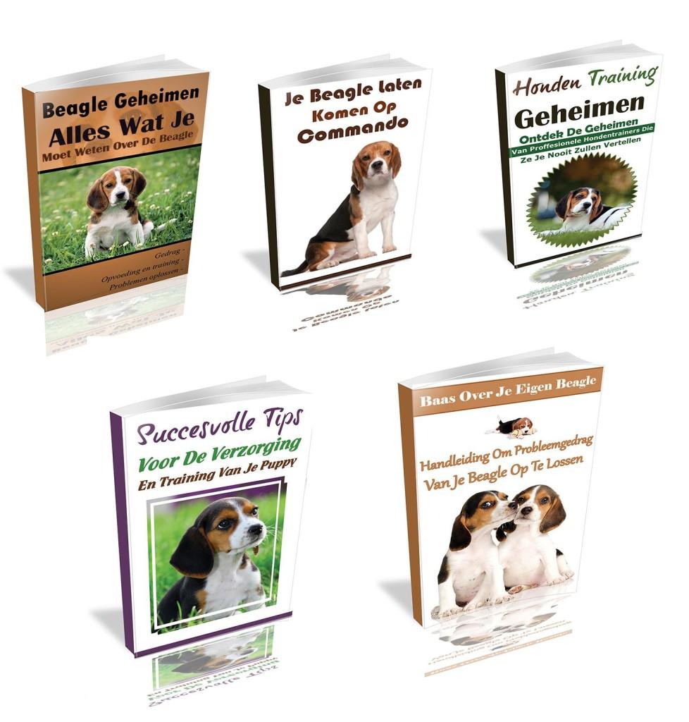 beagle geheimen bonussen