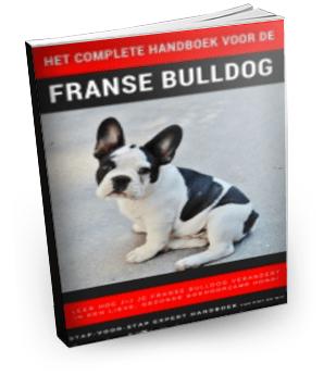 Het Complete Handboek Voor De Franse Bulldog Review – Oktober 2020
