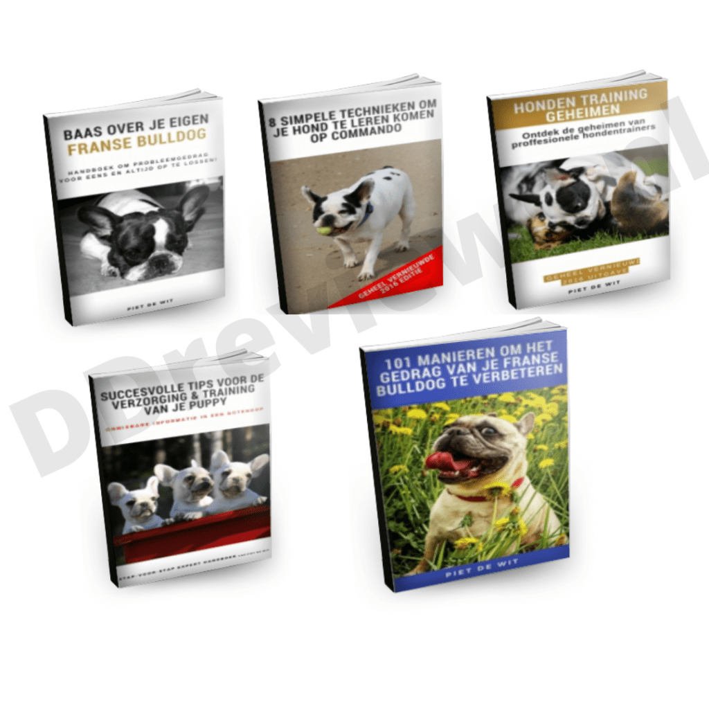 Bonusboeken Franse Bulldog