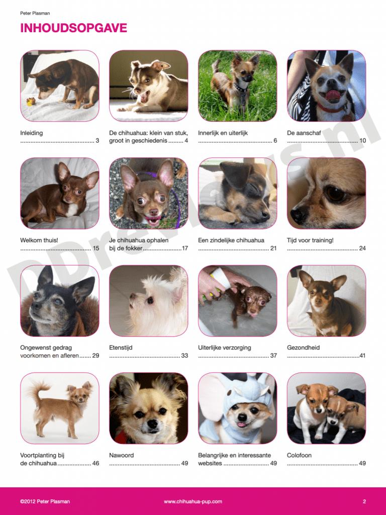 Inhoudsopgave Chihuahua handboek