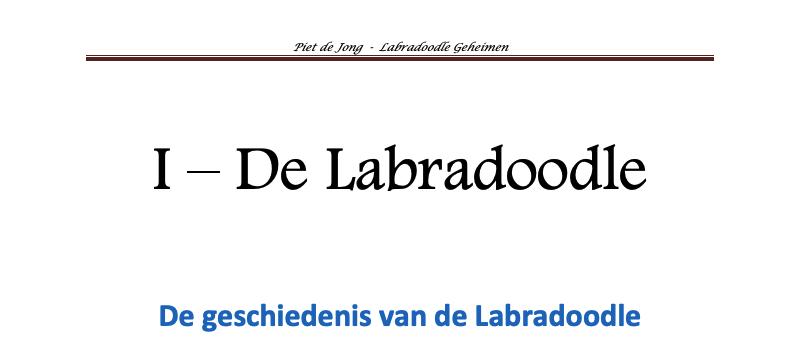 Labradoodle e-boek hoofdstuk 1