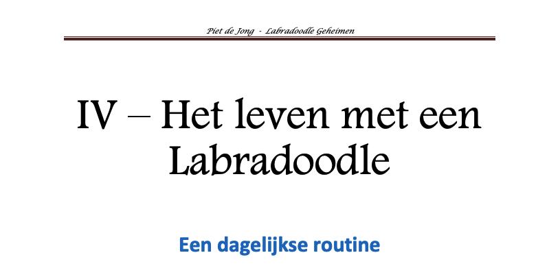 Labradoodle Geheimen honden e-book hoofdstuk 4