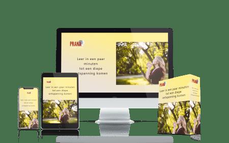 Je hersenactiviteit sturen voor ontspanning en activatie review (Prana)